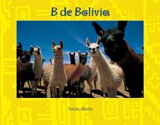 04 B de Bolivia